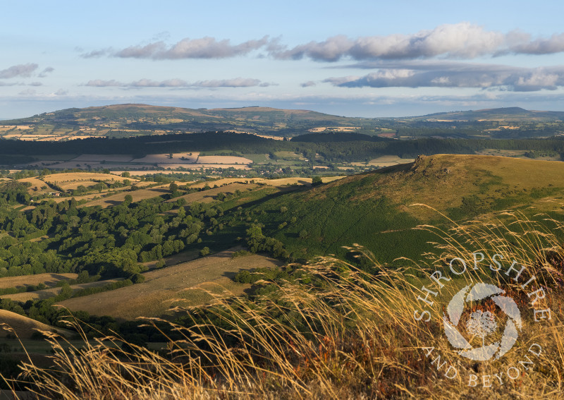 Willstone Hill, Wenlock Edge and the Clee Hills seen from Caer Caradoc, near Church Stretton, Shropshire.