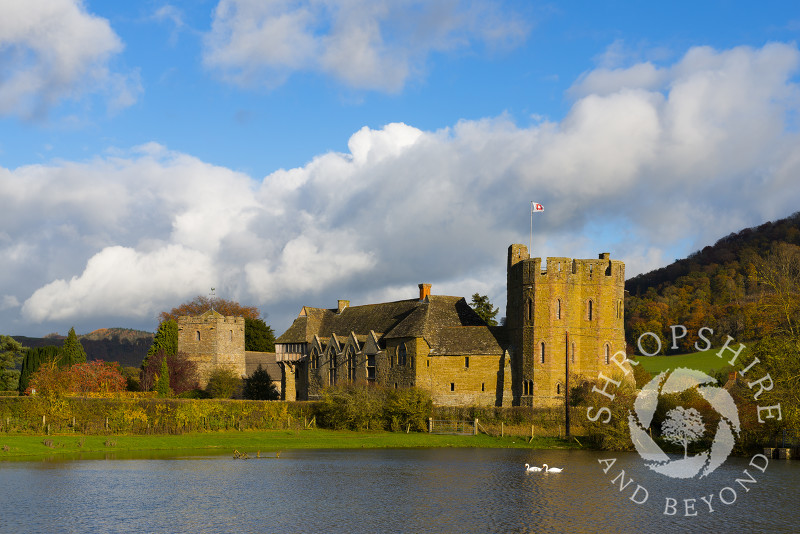 Swans glide past Stokesay Castle and the Church of St John the Baptist in autumn, Shropshire.