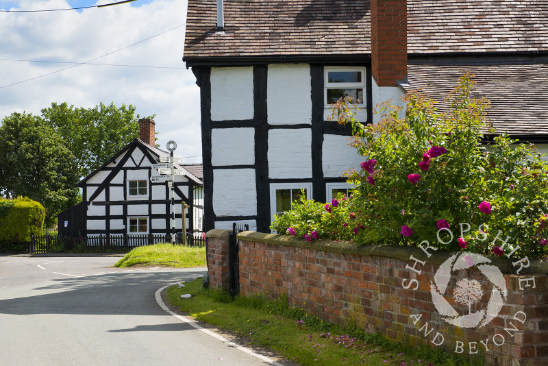 Black and white houses in the village of Upton Magna, near Shrewsbury, Shropshire, England.