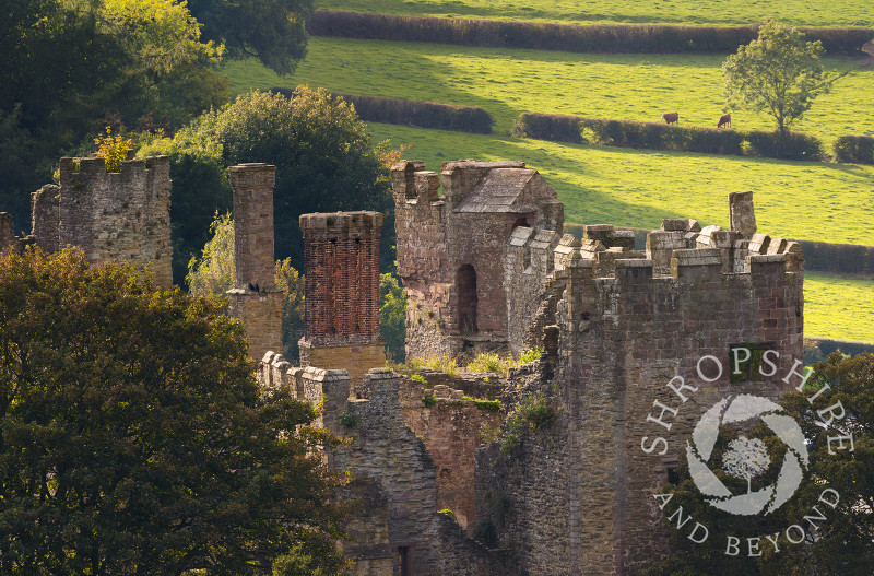 Ludlow Castle seen from the tower of St Laurence's Church, Ludlow, Shropshire.