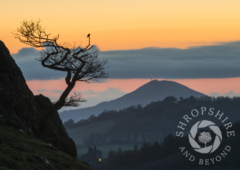Dawn breaks over the Wrekin, seen from the slopes of the Lawley in the Shropshire Hills.