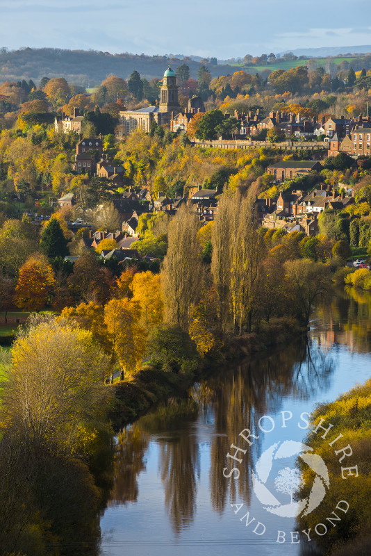 Early morning light picks out autumn colours at Bridgnorth and the River Severn, Shropshire, seen from High Rock.