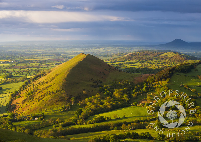Evening light on the Lawley, Shropshire, seen from Caer Caradoc, with the Wrekin in the distance.