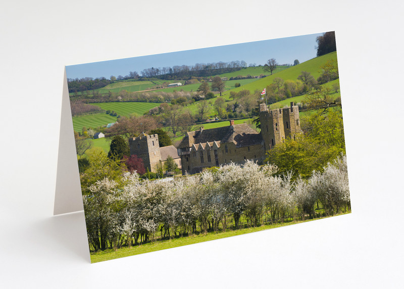 Spring blossom at Stokesay Castle, Shropshire.