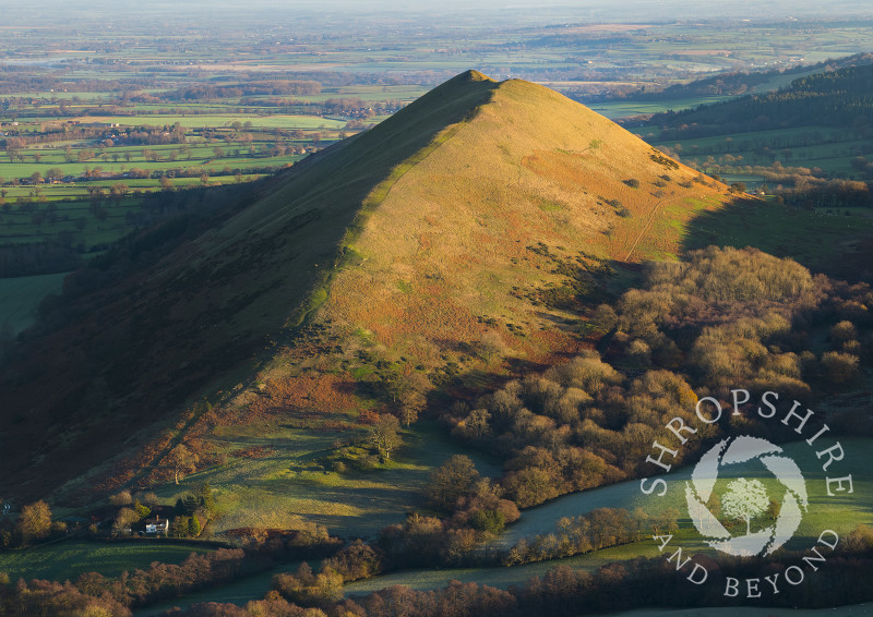Early morning light on the Lawley, seen from Caer Caradoc, Shropshire.