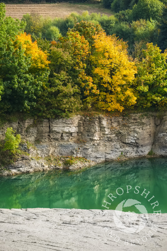 Autumn trees along a limestone cliff above the lagoon at Lea Quarry on Wenlock Edge, Shropshire.