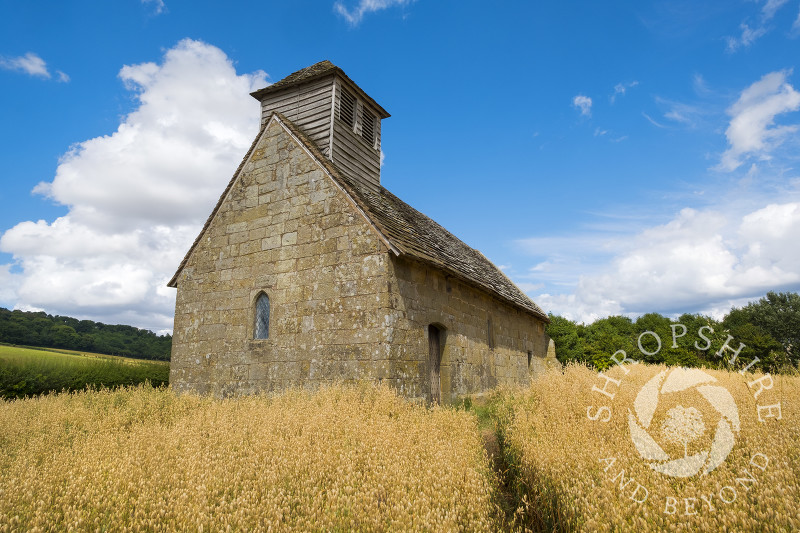 Langley Chapel in a corn field, Langley, Shropshire.