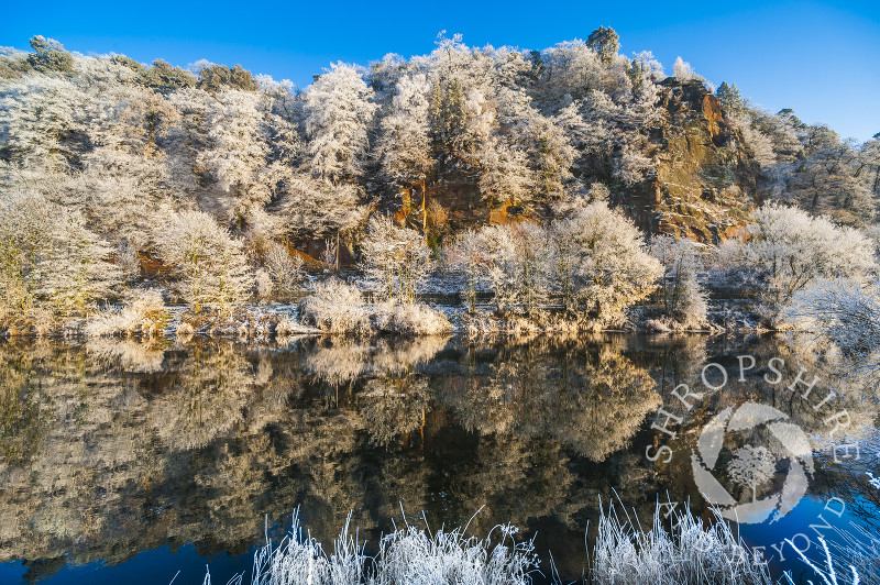 Hoar frost on High Rock overlooking the River Severn, at Bridgnorth, Shropshire, England.