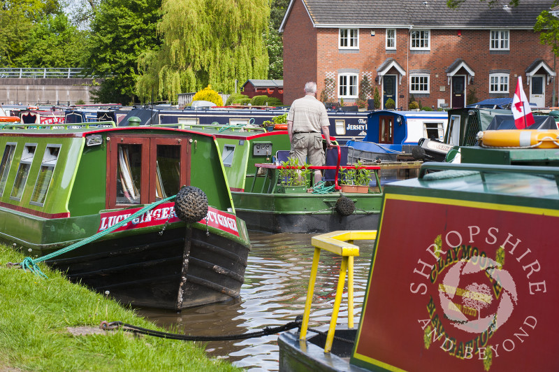 Canal boats moored outside homes alongside the Shropshire Union Canal at Market Drayton, Shropshire, England.