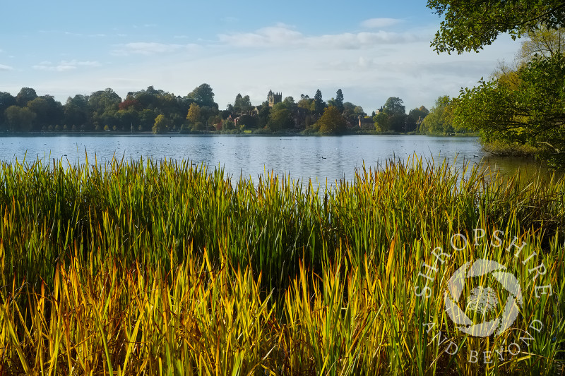 Looking across the Mere towards St Mary's Church at Ellesmere, Shropshire, in autumn.