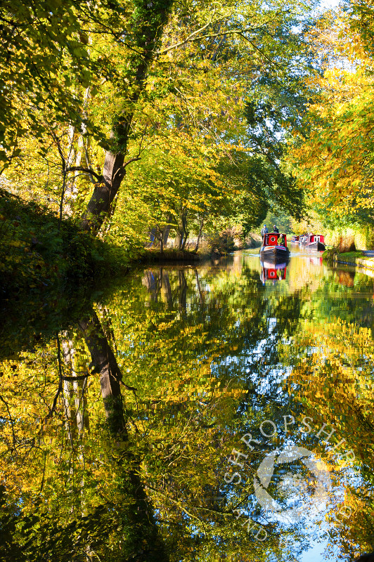 Autumn reflections on the Llangollen Canal at Ellesmere, Shropshire, England.