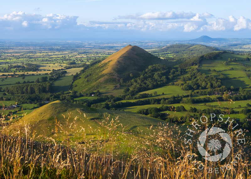 Evening light on the Lawley, seen from Caer Caradoc, Shropshire.