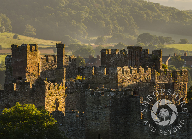 Early morning sun highlights the walls and battlements of Ludlow Castle, Shropshire.