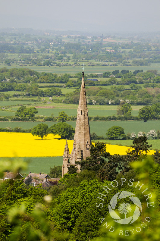 All Saints Church at Clive, seen from Grinshill Hill, Shropshire, England.