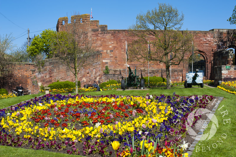 A bed of flowers outside Shrewsbury Castle, Shropshire, England.