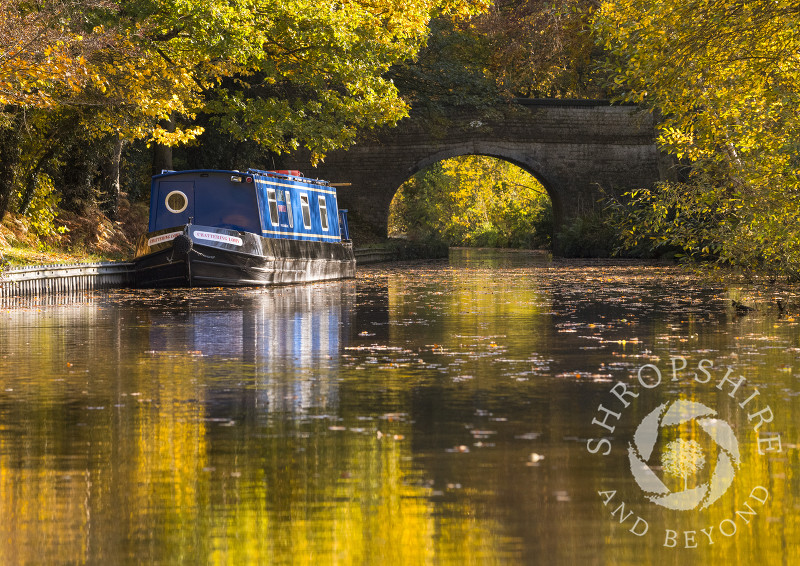 Autumn reflections on the Llangollen Canal near Ellesmere, Shropshire.