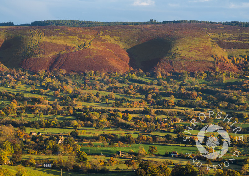Autumn countryside beneath the western slopes of the Long Mynd, Shropshire.