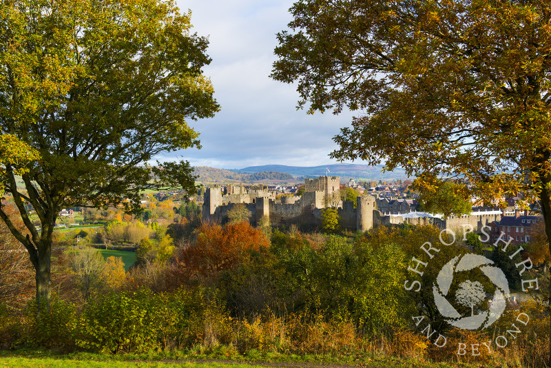 Autumn colours surround Ludlow Castle, seen from Whitcliffe Common, Ludlow, Shropshire, England.