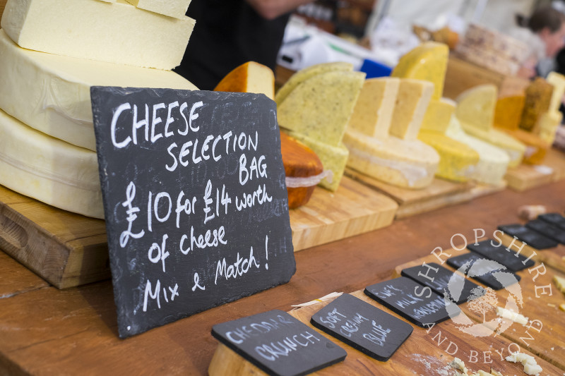 Cheeses for sale at Ludlow Food Festival, Shropshire.