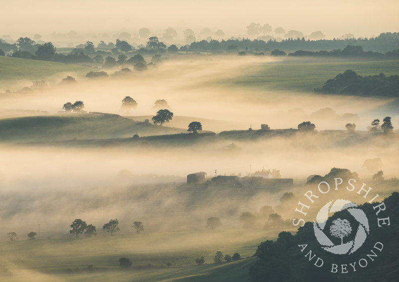 Mist over south Shropshire countryside at sunrise, seen from the Stiperstones National Nature Reserve.