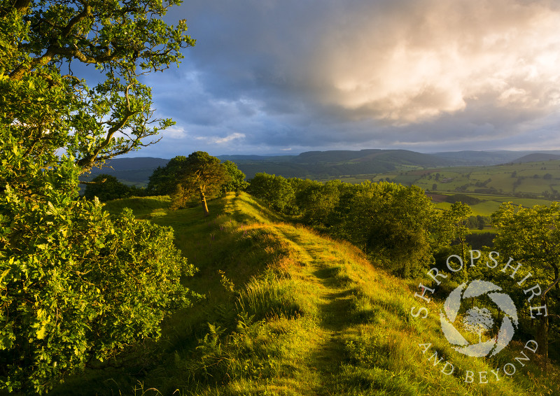 Evening light on Burrow Hill Iron Age hill fort, near Hopesay, Shropshire.