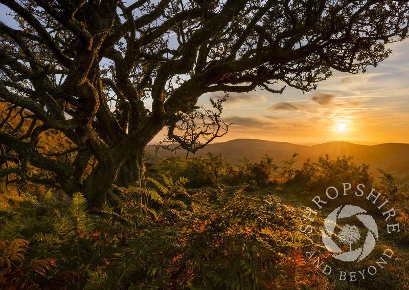 Sunrise seen from Caer Caradoc in the Redlake Valley, Shropshire.