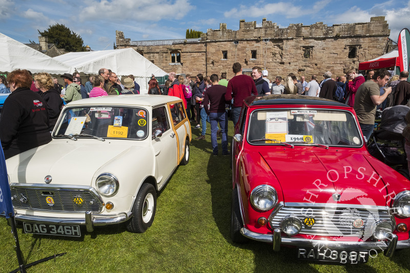 Minis on display at the 2017 Ludlow Spring Festival