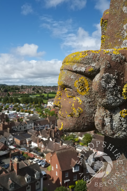 Lichen-covered stone carving on top of  St Leonard's Church in Bridgnorth, Shropshire.
